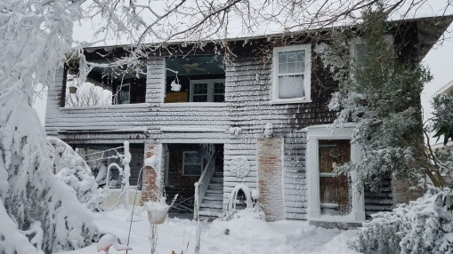 The frozen house